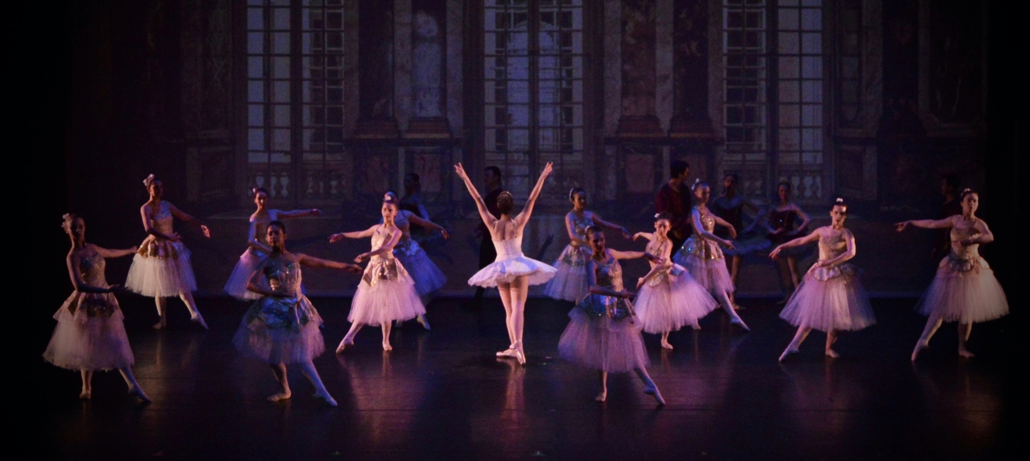 University Ballet Of Chicago